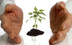 Национальный проект «МСП и поддержка индивидуальной предпринимательской инициативы»